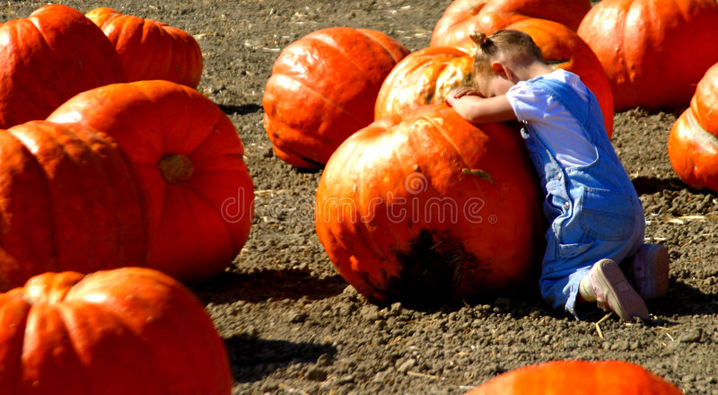 Prayer to the Great Pumpkin royalty free stock photos