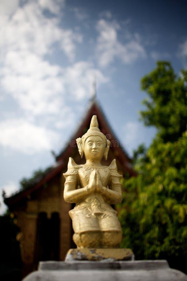 Praying Buddha stock image