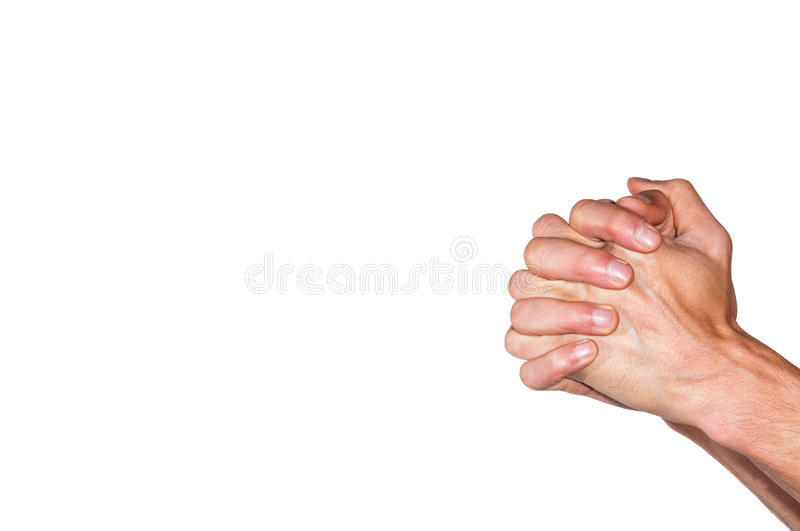Praying hands. Isolated on white background royalty free stock images