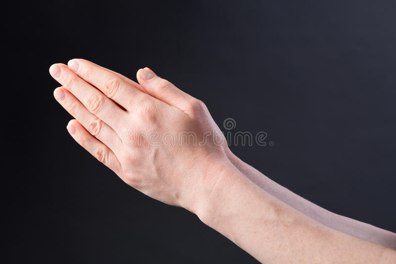Praying Hands of a Woman royalty free stock photography