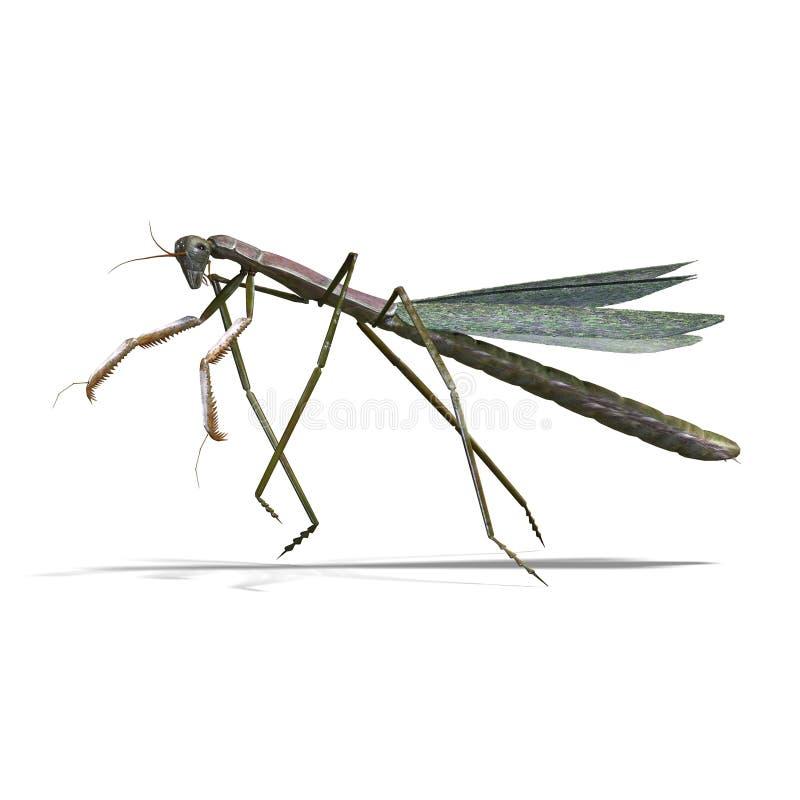 Download Praying mantis stock illustration. Illustration of flying - 11048314