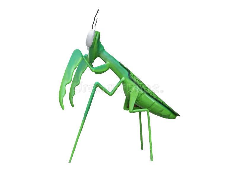 Praying mantis on a white background stock photos