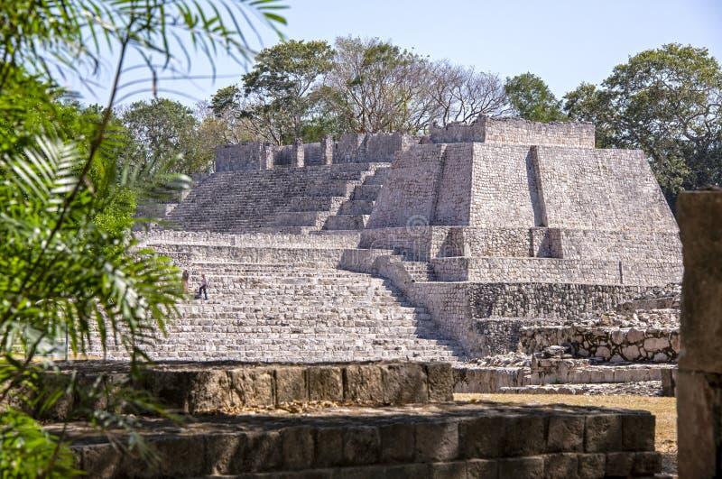 Pre Columbian majowie struktura obraz royalty free
