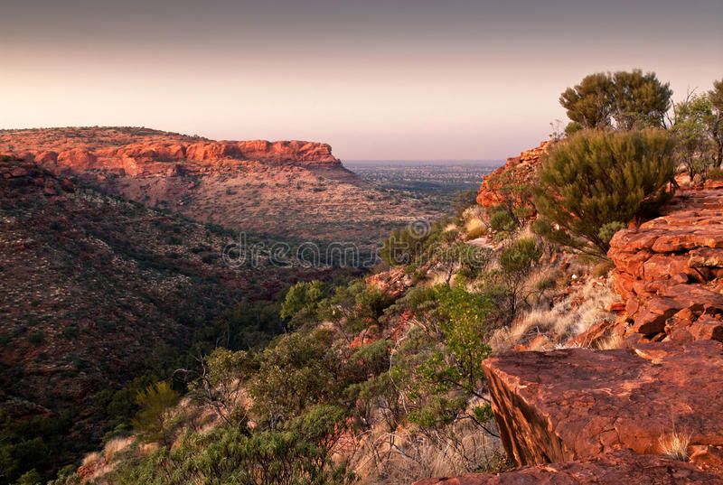 Pre-dawn light from top of King`s Canyon, Australia stock image