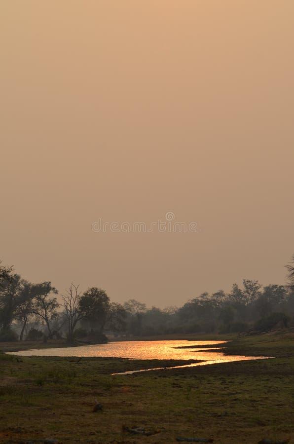 Pre-puesta del sol de Afrikan imágenes de archivo libres de regalías