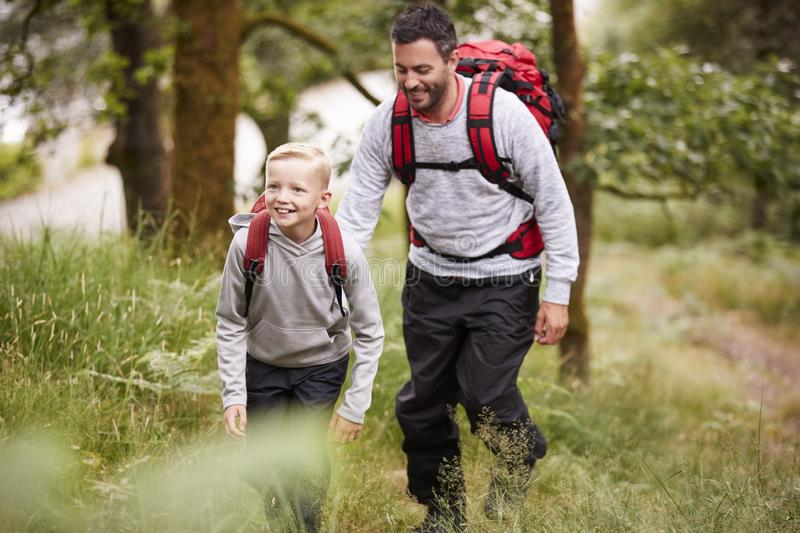 Pre-teen boy and his father hiking in a forest, selective focus stock photo