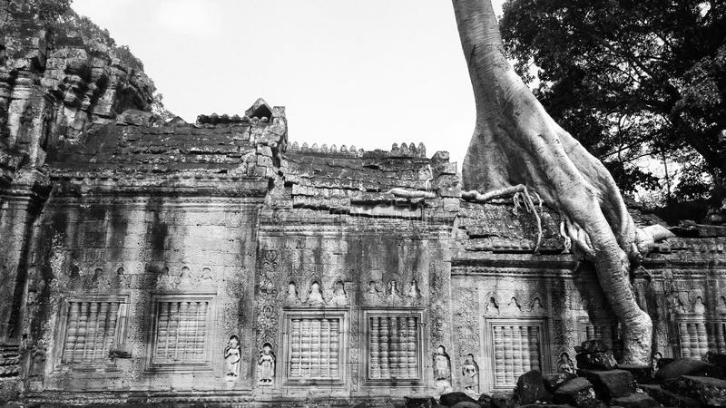 preah khan photo stock