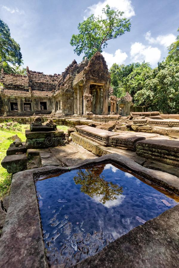Preah Khan. Dramatic reflection of a tree at the Preah Khan in Siem Reap, Cambodia royalty free stock photo
