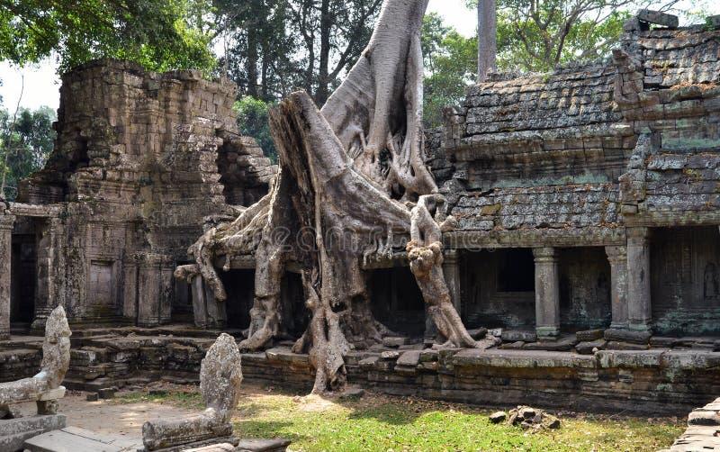 Preah khan Kambodja arkivbilder