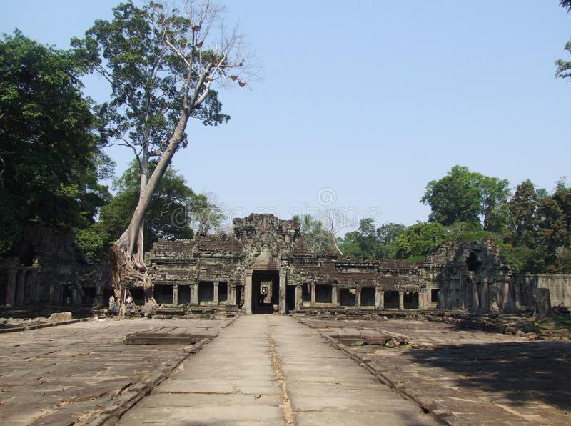 The Preah Khan temple in all its beauty. The big tree growing over the walls of Preah Khan temple, Siem Reap, Cambodia royalty free stock photography