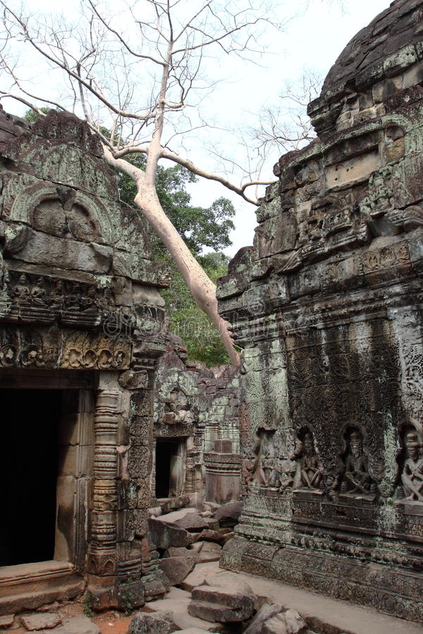 Preah Khan Temple in Angkor stockfotografie
