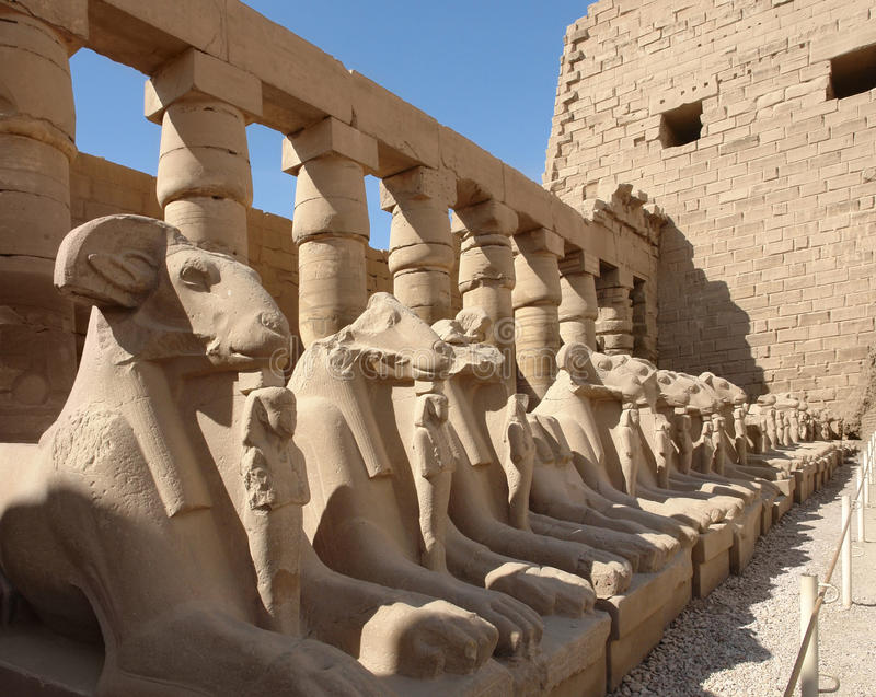 Precinct of Amun-Re in Egypt. Sunny illuminated scenery with lots of sphinxes at the Precinct of Amun-Re in Egypt (Africa stock photos