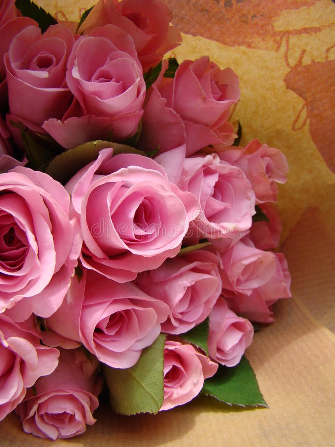 Precious pinks stock photography