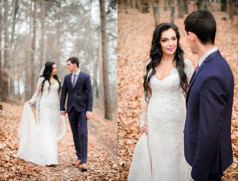 Precipitandosi la sposa castana cammina con lo sposo bello fotografia stock libera da diritti