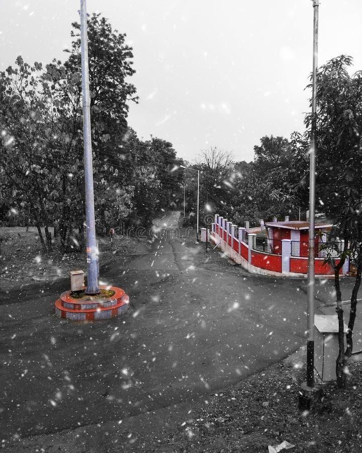 Precipitazioni nevose negli inverni fotografia stock libera da diritti