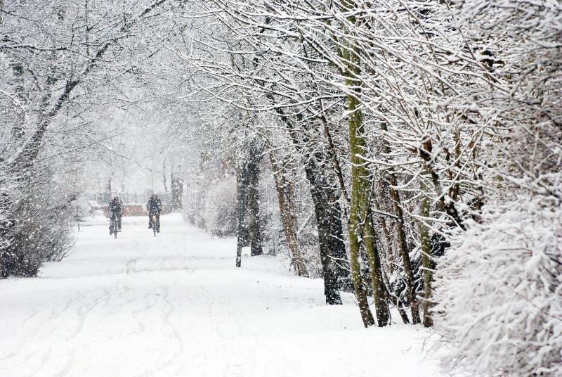 Precipitazioni nevose pesanti immagini stock