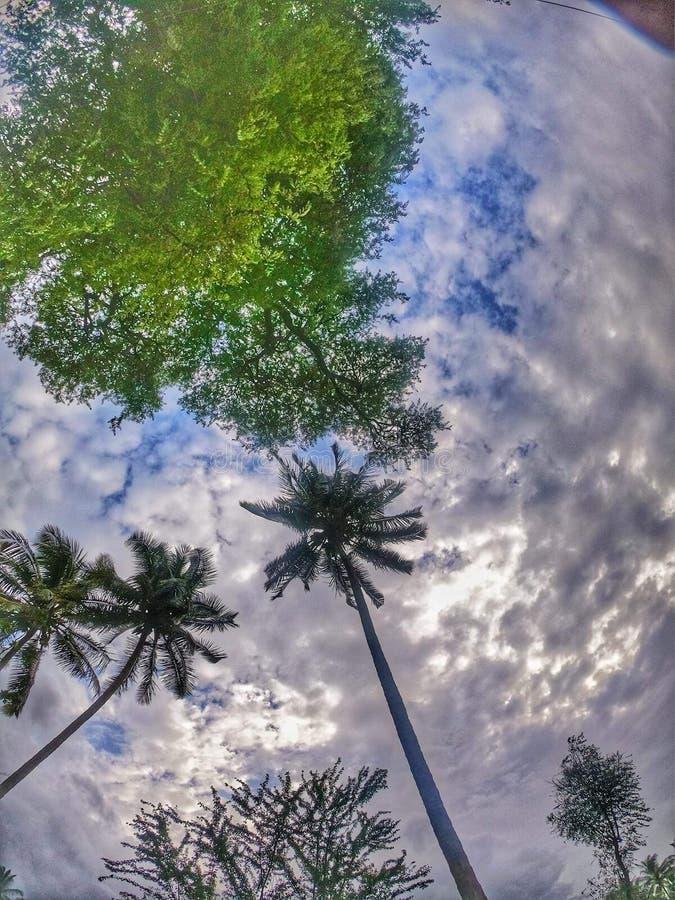 Precis en klick av himmel arkivbild