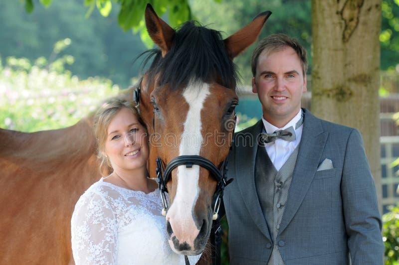 Precis gift par med hästen royaltyfria bilder
