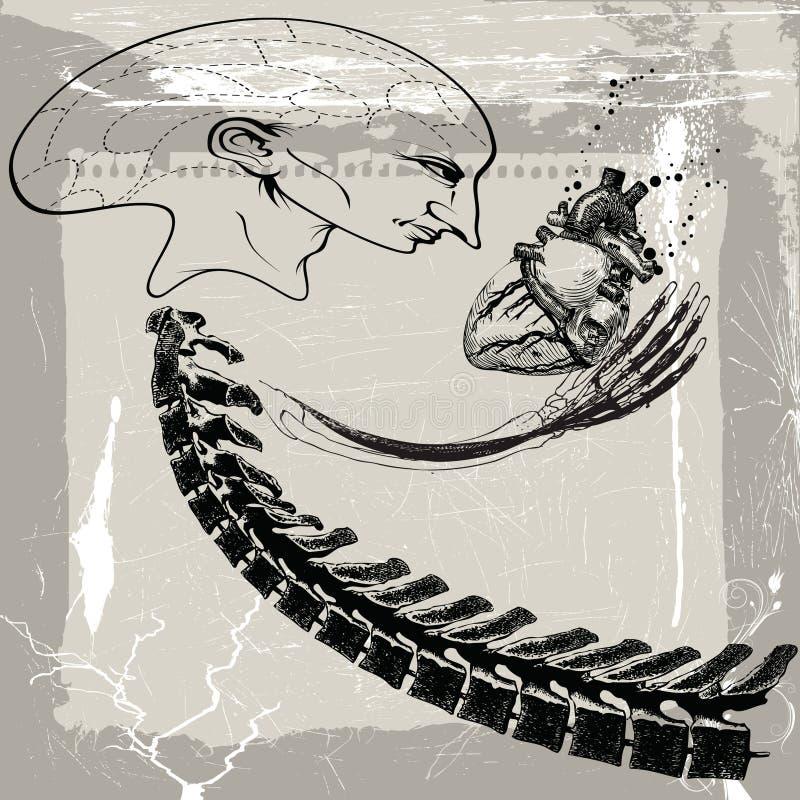 Download Predator stock vector. Image of bone, background, hand - 20541677