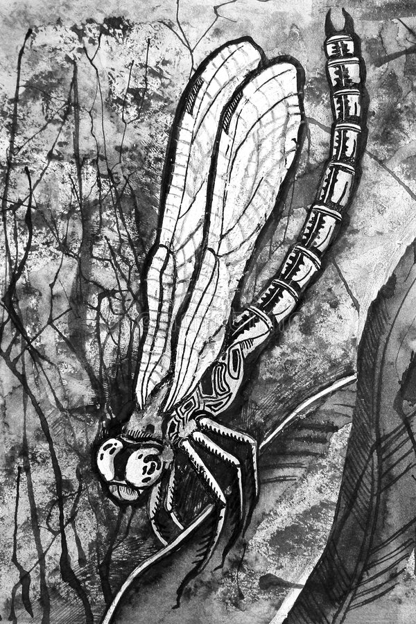 Download Predator stock illustration. Image of head, kind, fauna - 7301051