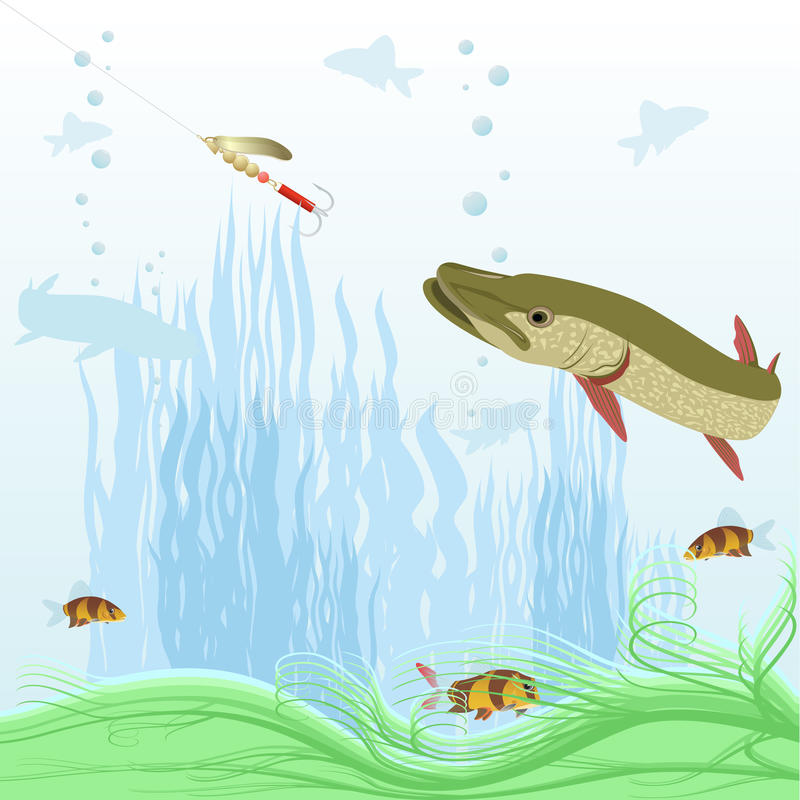 Download Predatory fish stock vector. Illustration of blue, lure - 26922387