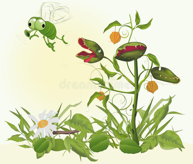 Predatory Plant Catching An Insect Royalty Free Stock Photo