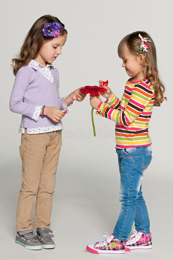 Predicting the future. Pretty small girls tearing daisy petals on the grey background stock photo