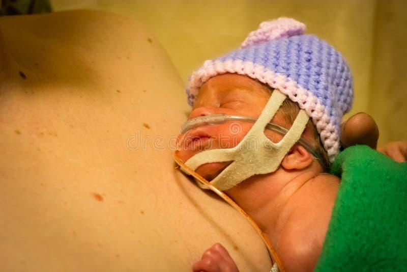 Preemie newborn girl skin to skin with dad royalty free stock image