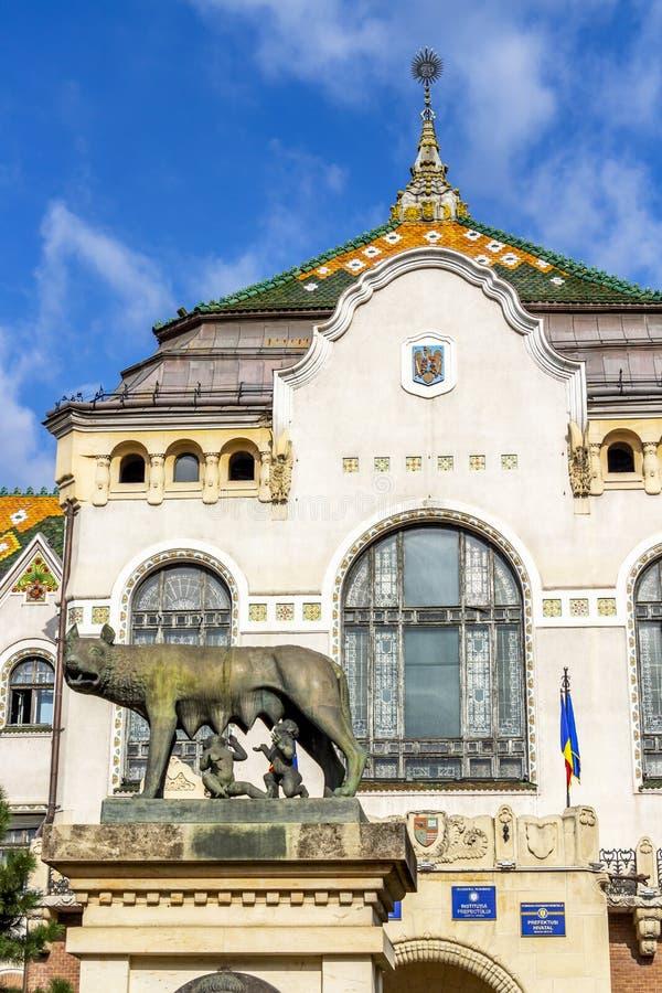 Prefectuur van Mures in Targu Mures, Roemenië stock foto's