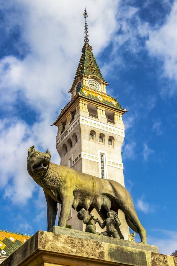 Prefectuur van Mures in Targu Mures, Roemenië royalty-vrije stock foto