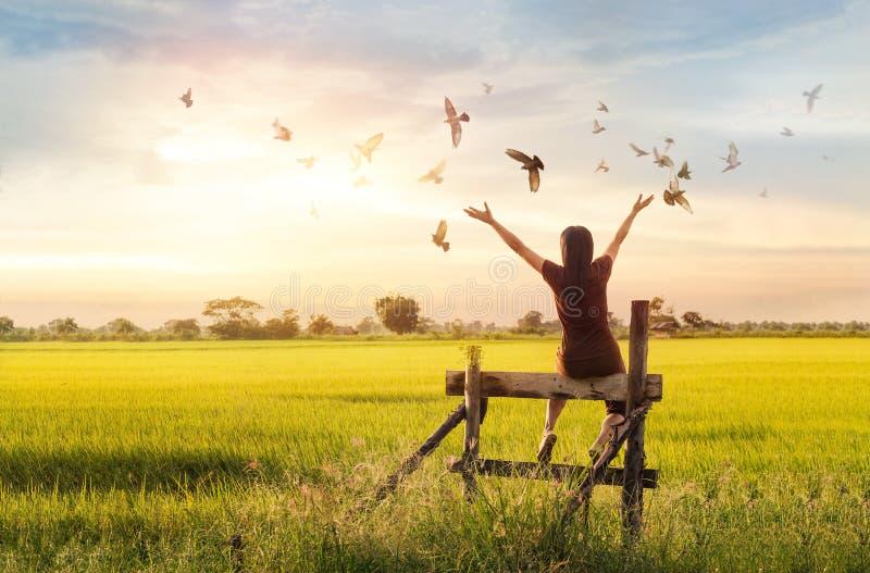 Pregare della donna ed uccello libero che godono della natura sul fondo di tramonto fotografia stock