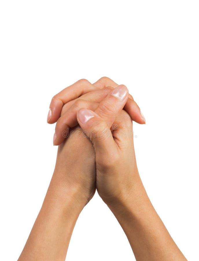 Pregare delle mani della donna fotografia stock
