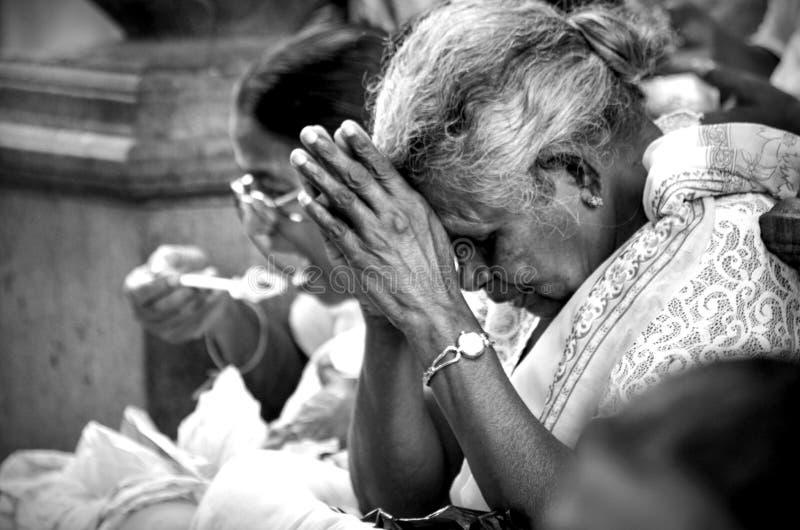 Preghi duro fotografie stock
