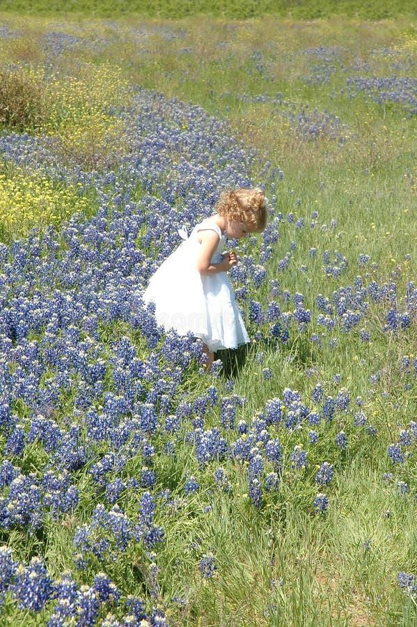 Preghiera di Childs fotografia stock