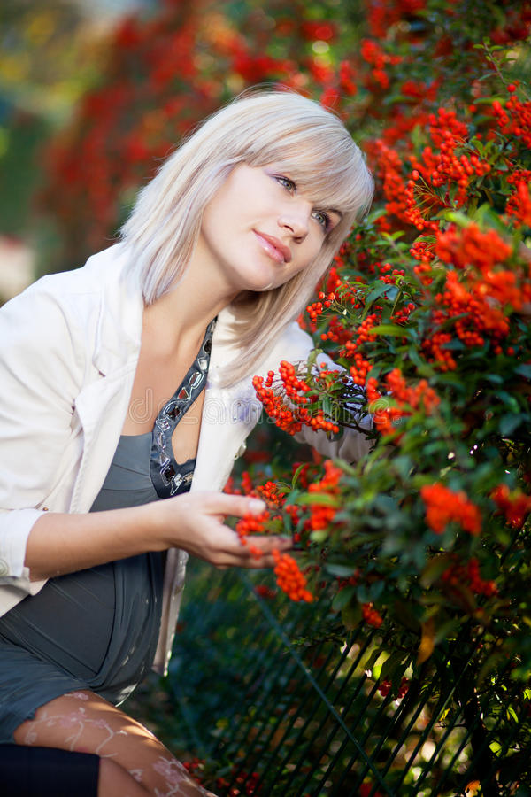 Download Pregnancy and autumn stock photo. Image of autumn, outdoor - 17038070