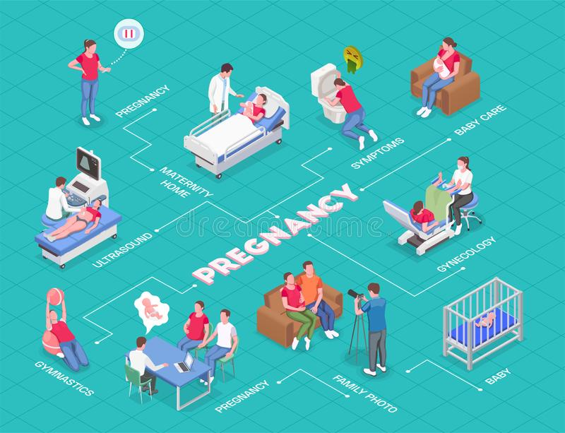 Pregnancy Isometric Flowchart. With pregnant women consulting gynecologist parents and newborn babies 3d vector illustration royalty free illustration