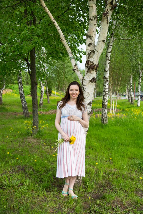 Pregnancy, motherhood, the concept of waiting-close - up of a happy pregnant woman with a big belly with a bouquet of flowers at t. He birch, love happiness baby royalty free stock photos