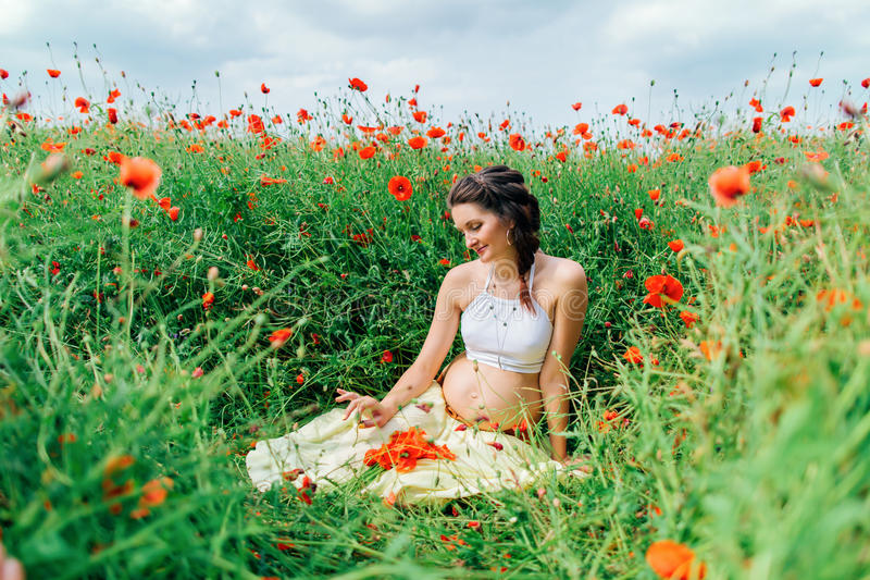 Pregnant beautiful girl in the poppy field stock image