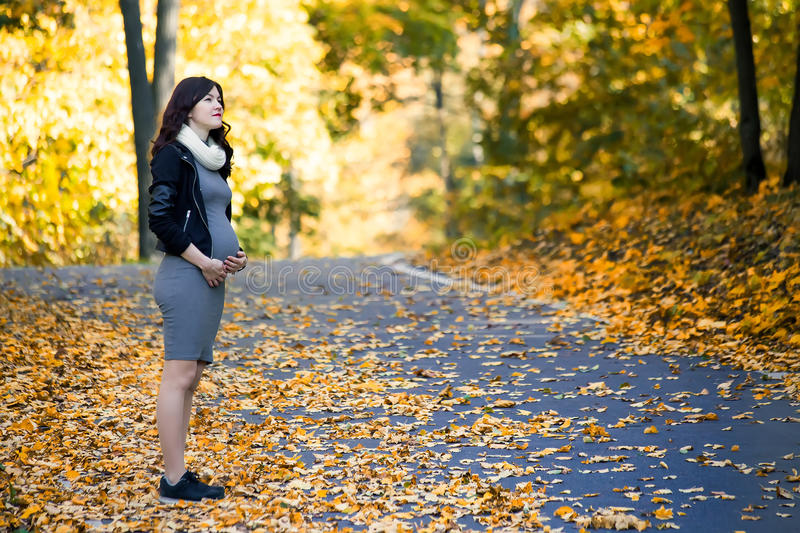 Pregnant girl in autumn forest royalty free stock photos