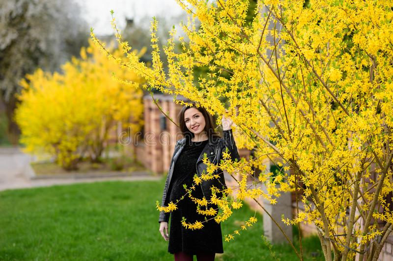 Pregnant girl in the autumn garden. Beautiful portrait of a pregnant woman`s belly in a warm knitted dress in the colorful autumn royalty free stock image