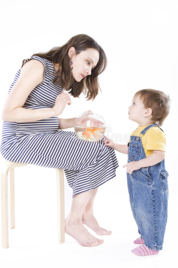 Download Pregnant Woman With Aquarium Stock Image - Image: 10588445