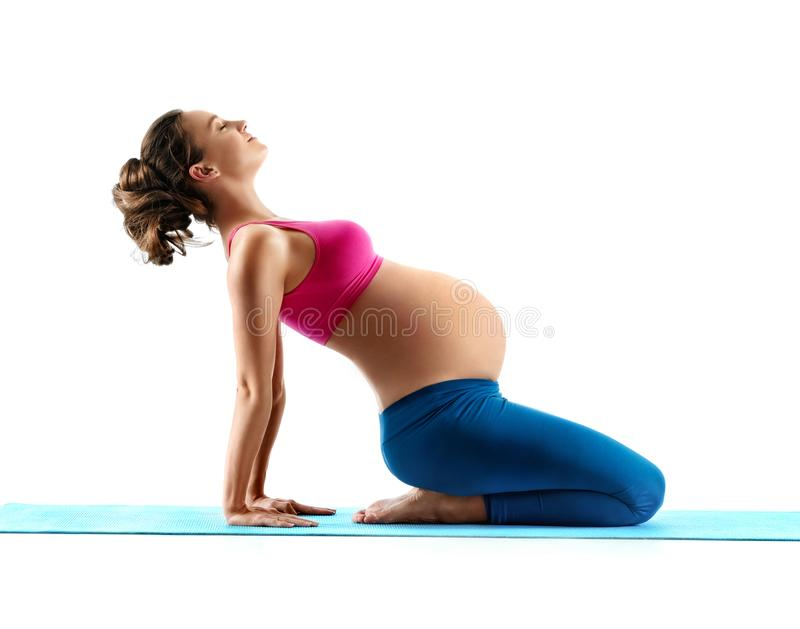 Pregnant woman does yoga exercise on last months of pregnancy. Isolated on white background. Concept of healthy life royalty free stock photography