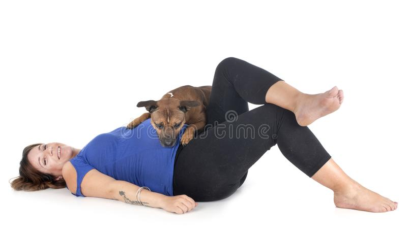 Pregnant woman and dog stock images