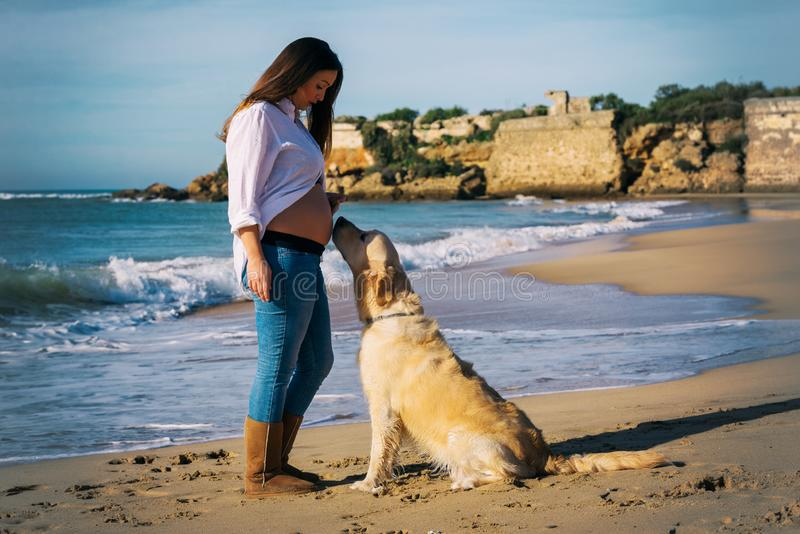 Pregnant woman enjoys her dog by the seaside royalty free stock images