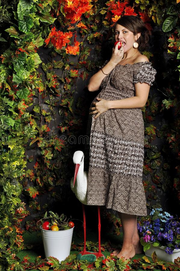 Pregnant woman in garden looking studio style eat apple. Pregnant woman in studio style eat apple stock photography