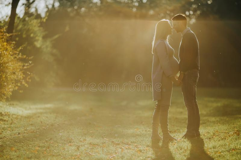 Pregnant woman and her loving man posing at autumn park stock image