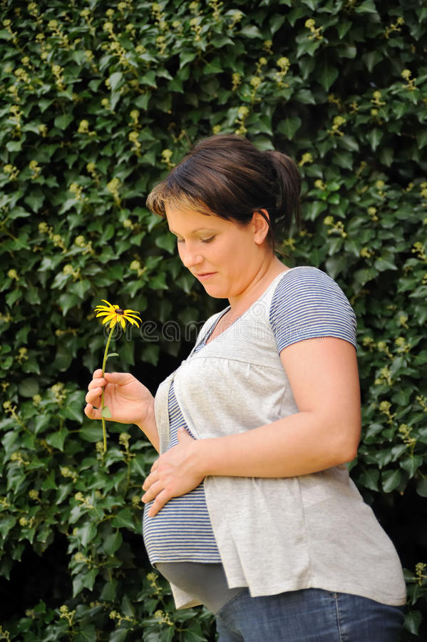 Download Pregnant Woman Holding Her Belly And Yellow Flower Stock Photo - Image: 13514898