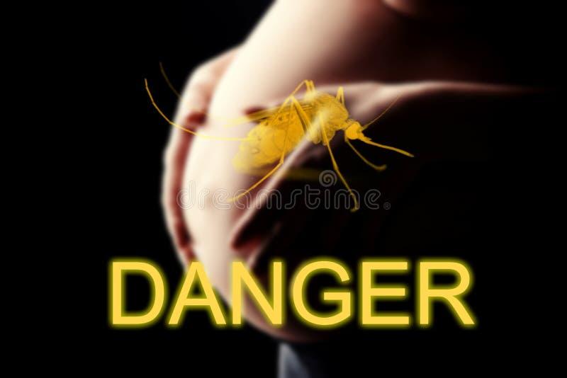 Pregnant woman, imminent danger to the virus Zika. DANGER stock image