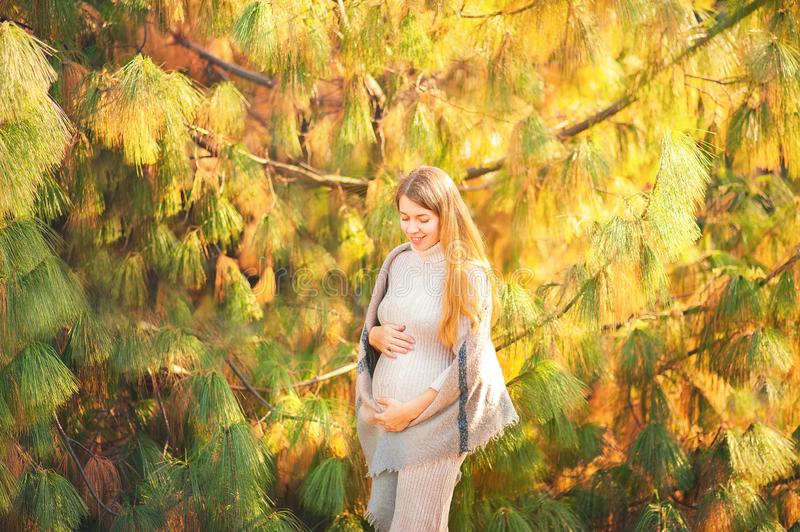 Pregnant woman in the park closeup. Autumn pregnant portrait in sunshine and copy space stock photography