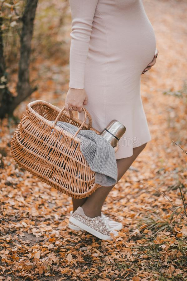 Pregnant woman with picnic basket in autumn forest stock image